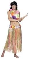 Hawaiian Multi Colored Grass Skirt | Fancy Dress Ideas | Scoop.it