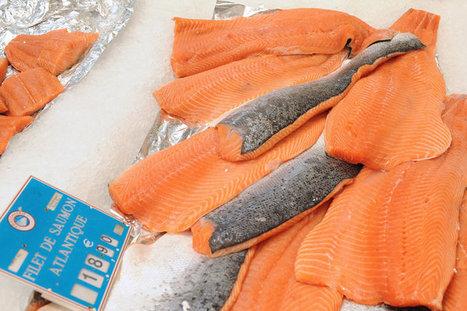 Les Français mangent-ils trop de poissons ? - Europe1.fr - Environnement | Notre planète | Scoop.it