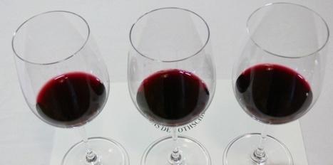 Sommelier et oenologue. L'un décante et l'autre assemble, mais qui ... - Le Nouvel Observateur | vin et société | Scoop.it