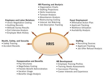 How SaaS HR Software Improves Performance Evaluation | EmployWise | Scoop.it