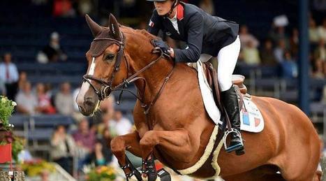 Les sports équestres aussi ont leur mercato | Cheval et sport | Scoop.it