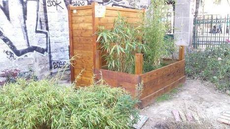 Comment transformer les mauvais pisseurs en bons jardiniers ! • Néoplanète | Innovations urbaines | Scoop.it