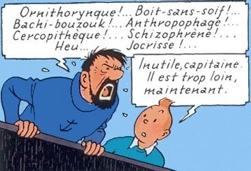 Le vocabulaire du capitaine Haddock | Infos insolites | Scoop.it