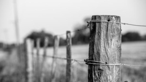 Barbed Wire Fences Were An Early DIY Telephone Network | Current Events and History | Scoop.it