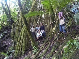 Oaxaca's natural treasures are protected by community-based tourism | Fair, ethical and sustainable tourism | Scoop.it