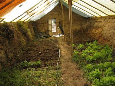 Construire une serre souterraine pour cultiver toute l'année : mode d'emploi ! - Santé Nutrition | Tilapia et jardin | Scoop.it