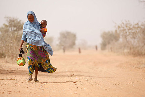 Sahel : la FAO demande un soutien d'urgence pour affronter l'insécurité alimentaire croissante | Questions de développement ... | Scoop.it
