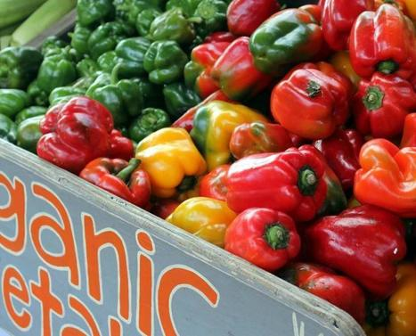 Organic Produce Really Does Lessen Exposure To Pesticides | Shrewd Foods | Scoop.it