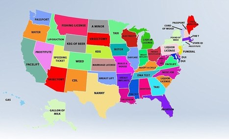 Revealed: The most commonly searched goods and services in each state | Kickin' Kickers | Scoop.it