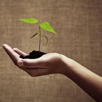 3 Keys to Entrepreneurial Success | all things entrepreneurial | Scoop.it