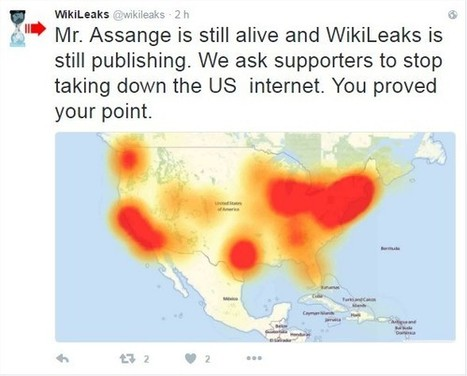 Quand les hackers coupent un brin d'Internet – en rétorsion pour Assange ? | ACTUALITÉ | Scoop.it