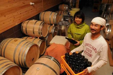 JAPAN: First locally produced wine from Aichi set to hit market | Vitabella Wine Daily Gossip | Scoop.it
