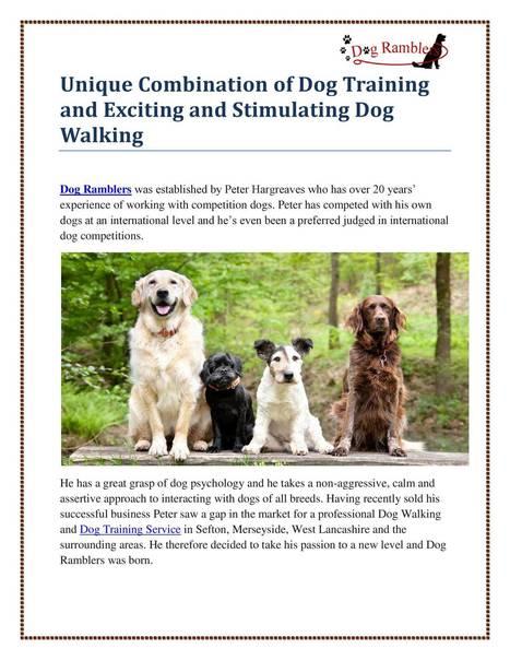 Dog_Training.pdf | Live Streaming Video | Scoop.it