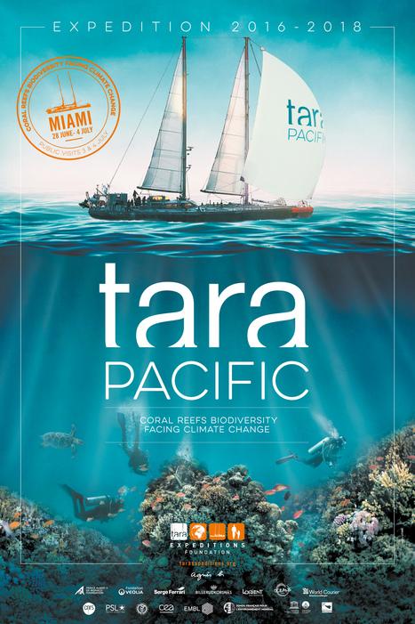 Première escale de Tara Pacific à Miami | Ocean's news | Scoop.it