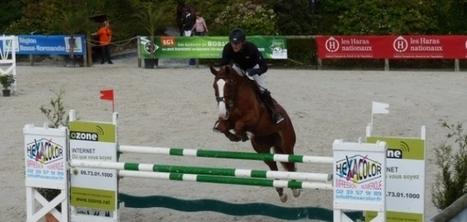 Normandie Horse show : un final en beauté   Actu Basse-Normandie (La Manche Libre)   Scoop.it