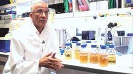 La science au chevet des sols | Chimie verte et agroécologie | Scoop.it