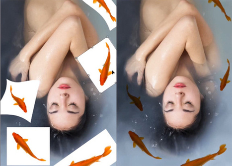 How to Create Believable Photo Composites | xposing world of Photography & Design | Scoop.it