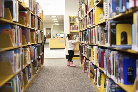 'Bibliotheken en e-boeken: een dure flop' | trends in bibliotheken | Scoop.it