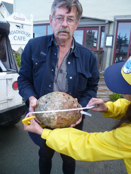 Abalone hunters flood coast over Memorial Weekend | Mendocino County Living | Scoop.it