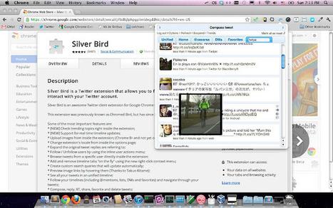 Silver Bird : une extension qui permet de lire ses tweets et d'interagir avec son compte Twitter dans Chrome | TICE & FLE | Scoop.it