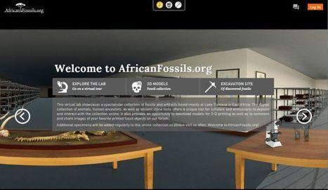 African Fossils te invita a descubrir virtualmente fósiles y utensilios ancestrales encontrados en África | Recull diari | Scoop.it