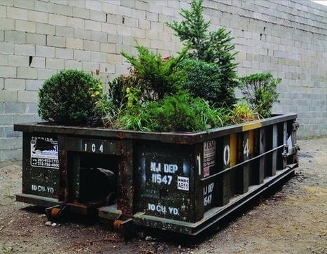 Beautifying New York With Dumpster Gardens... | green streets | Scoop.it