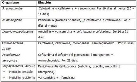 Guía de práctica clínica para el tratamiento de la meningoencefalitis bacteriana. | Rodríguez Llerena | Medisur | NEISSERIA MENINGITIDIS. Causante de la meningitis bacteriana , sumamente peligrosa | Scoop.it