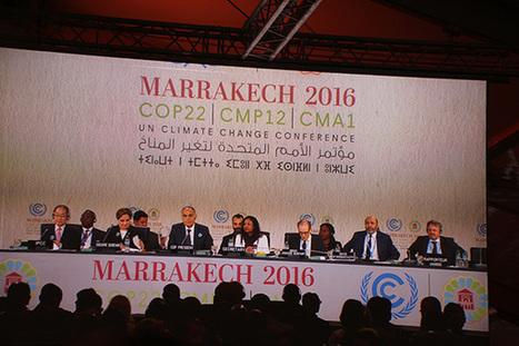 """Cambio climático en la COP22: del """"espíritu de París"""" al reglamento, otra vez - Elcano   Energy and Environmental Security   Scoop.it"""