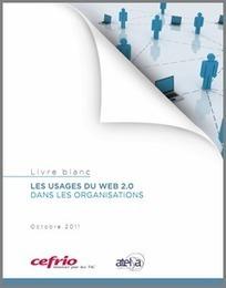 Comment le Web 2.0 change les pratiques en entreprise | Formation et culture numérique - Thot Cursus | Evolutions of the Digital Media | Scoop.it