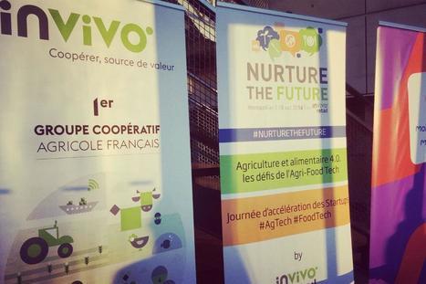 Food Tech, startup, potager connecté : comment InVivo planche sur l'alimentation de demain   Distribution, Enseignes et points de vente - www.codoc.fr   Scoop.it