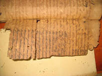 Projet de sauvetage des archives néerlandaises en Guyane (Guyana) | UNESCO | Nos Racines | Scoop.it