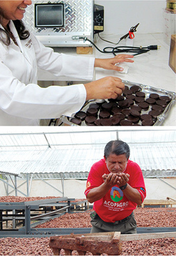 Innovación en el mundo del chocolate - MIT Technology Review | Educacion, ecologia y TIC | Scoop.it