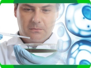 Affordable Stem Cell Therapy | Cheap Stem Cell Treatment Abroad | STEM | Scoop.it
