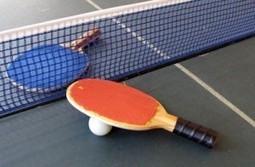 Tennis de table : L'Egypte décroche le bronze au World Team Classic | Égypt-actus | Scoop.it