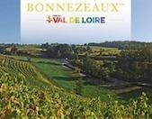 5-6 Septembre : Vignes Vins Randos en Val de Loire - | Le vin quotidien | Scoop.it