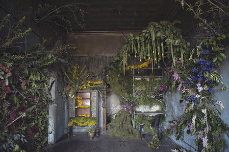 Activists Revitalize Abandoned Detroit Home With Over 4,000 Flowers | Story Route | Scoop.it
