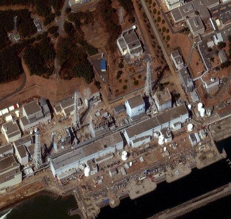 Japon : nouvelles mesures radioactives record enregistrées près de Fukushima | RFI | Japon : séisme, tsunami & conséquences | Scoop.it