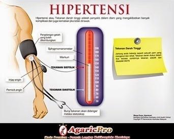 Obat Herbal Darah Tinggi | bestagaric | Scoop.it