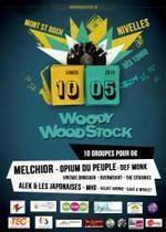 Woody Woodstock – Musique, ambiance et bonne humeur pour zéro euro | Woody Woodstock - Revue de presse | Scoop.it