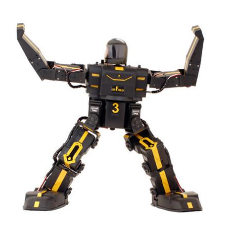RoboPhilo : Un Humanoïde programmable à – de 400$ | Bots and Drones | Scoop.it