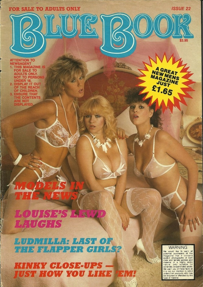 Vintage Blue Book Lingerie Cover | Sex History | Scoop.it