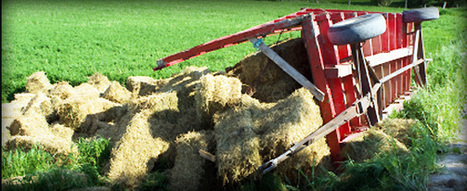 Farming Accidents and Injuries Claims lawyers in U   work injury compensation claim   Scoop.it