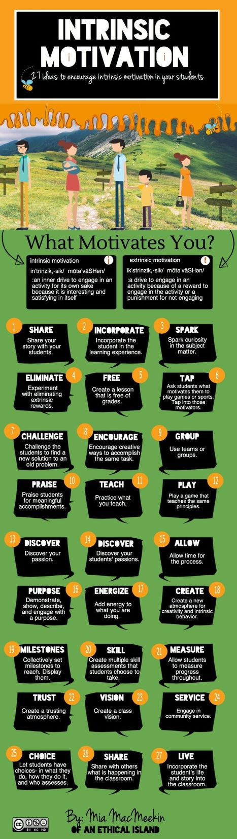 Intrinsic Motivation: Instill It In At Least 27 Ways [INFOGRAPHIC] | Student Engagement for Learning | Scoop.it