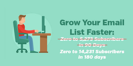 How to Get 8,958 Email Subscribers in 90 Days | ProfitBlitz | Public Relations & Social Media Insight | Scoop.it