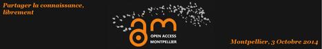 Open Access Montpellier | Journée d'information sur la publication en accès libre du 3 octobre 2014 | InfoDoc - Information Scientifique Technique | Scoop.it
