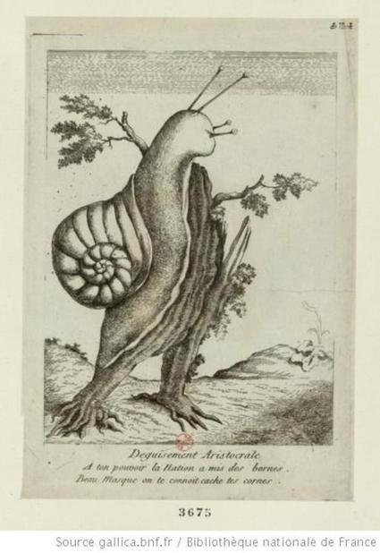 CABINET DE CURIOSITES | A-arts-s s s (animaux, nature, écologie, peinture huile) | Scoop.it