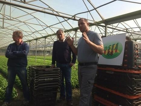 P-O : Les agriculteurs invitent les grandes surfaces à découvrir leur travail - Le Journal Catalan | L'info des Pyrénées-Orientales | Scoop.it