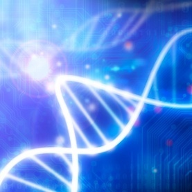 """""""Junk"""" DNA Holds Clues to Common Diseases: Scientific American 