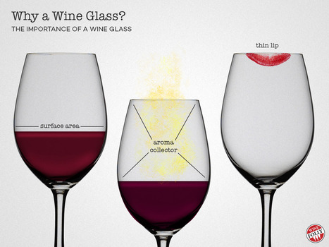 The Importance of a Wine Glass | Wine Folly | Vinitours | Scoop.it