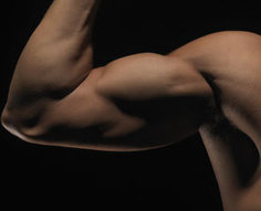 Muscles Remember Their Strength : DNews | Performance improvement of self and or others | Scoop.it